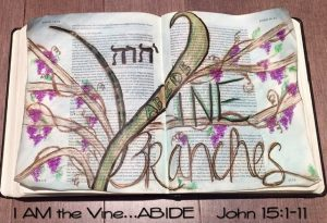 vine and branches -John 15