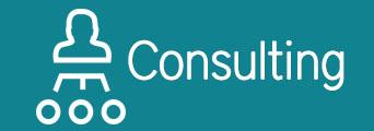 SMI-Consulting